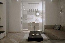 Зонирование гостиная кухня стеклянная перегородка