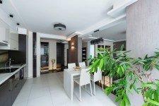 Светлая кухня квартиры-студии современный стиль