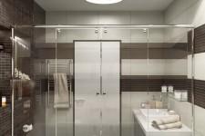 Зонирования ванны от зоны гигиены стеклянная дверь